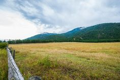 Home for Sale - 6449 Highway 97, Falkland, BC V0E 1W0 - MLS® ID 10088122.  Property is composed of two separate titles: 23.9 acres and 41 acres. house is located on 24 acre parcel. 3 bedroom 1.5 bathroom house. With approximately 1600 sq. feet of liveable space. Property is ideal for horses or cattle. Vernon Bc, Lots For Sale, Real Estate Investing, Investment Property, British Columbia, Cattle, View Photos, Separate, Acre