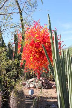 Dale Chihuly's Glass Art: Chihuly in the Garden