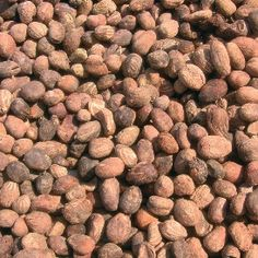 We source shea nuts for shea butter from the southwestern provinces of Burkina Faso!