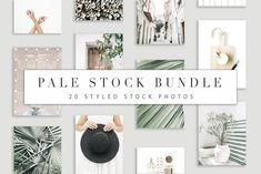 Pale Stock Bundle 1 by Floral Deco on @creativemarket
