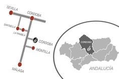 Casa Rural Wifi Montilla Andalucia Enoturismo Bodegas Cordoba