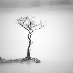 Minimalist Photography by Hengki Koentjoro