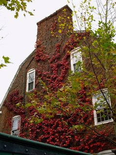 It would be nice to find a brick house to use in a shot Harvard Square, Cambridge Ma, Lovely Smile, Time Of The Year, Massachusetts, Castles, Places To See, Boston, Brick