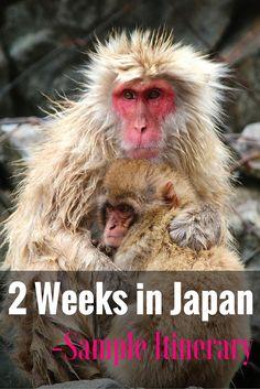 2 Weeks in Japan Pinterest