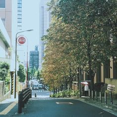 Walking around the streets near Meiji University #明治大学 #東京 #神保町 #tokyo #igersjp #igers #japan_daytime_view #lovers_nippon #street #streetphotography #day #picoftheday #散歩 #大学 #sunny #japan #fb #trees #風景 #vscocam #vsco #photo