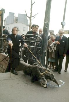 Salvador Dali taking his anteater for a walk in Paris in 1969.