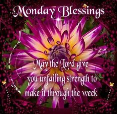 Happy Monday You Are Blessed Monday Wishes, Monday Greetings, Monday Blessings, Morning Blessings, Monday Morning Blessing, Good Morning Happy Monday, Blessed Week, You Are Blessed, Good Night Sweet Dreams