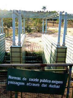 Piscina com Ondas no Parque da Cidade   retrato do abandono desde o final da década de 1980
