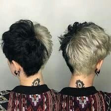 Edgy Pixie Cuts Ideas - Female Hairstyles for Short Hair - Short Hair Styles Split Dyed Hair, Dyed Hair Men, Half Dyed Hair, Hair Dye, Curly Man Hair, Edgy Pixie Cuts, Short Hair Cuts, Dyed Pixie Cut, Short Hair Pixie Edgy