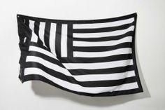 American Flag - New interpretations of the American flag via @dcwdesign blog.