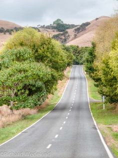 The long way home is the only way home - Waiheke Island. Waiheke Island, Long Way Home, Country Roads, Photos, Pictures