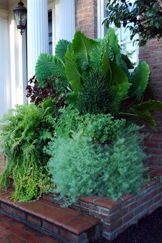 Over The Top Container Garden