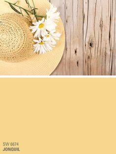 Sherwin-Williams yellow paint color - Jonquil (SW 6674)