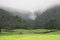 The Wairere Falls pumping after the rain