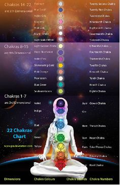 CHAKRA 8