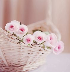 Discovered by dreams-are-pastel. Find images and videos about beautiful, pink and flowers on We Heart It - the app to get lost in what you love. Love Rose, Pretty Flowers, Pink Flowers, Romantic Flowers, Rose Cottage, Everything Pink, Color Rosa, Pretty Pastel, Beautiful Roses
