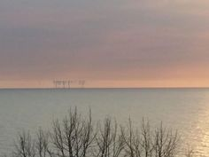 Quirk makes Chicago skyline mirage over Lake Michigan