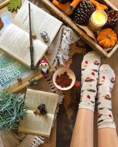 Autumn magic socks and books