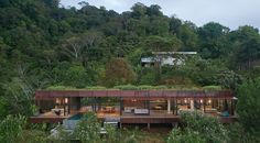 A Green Roof Allows This House To Blend Into The Surrounding Landscape Timber Cladding, Exterior Cladding, Costa Rica, Round Light Bulbs, Ipe Wood, Charred Wood, Dappled Light, Home Look, Granada