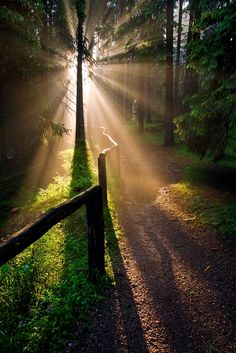 Z Jizerských hor od Tomáše Holuba Simply Beautiful, Beautiful Places, Gods Creation, Rhode Island, Czech Republic, Pathways, National Parks, Country Roads, World