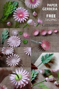 Paper flowers DIY, f