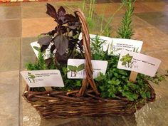 "Retirement gift herb basket with puns on the labels. Thyme: Enjoy retirement and have a great ""thyme."" Dill: Your friendship is the real ""dill"". Mint: You have ""mint"" so much to us. Sage: Thank you for sharing your ""sage"" wisdom with us. Rosemary: Glad you can now stop to smell the ""rosemary."" Basil: Don't forget to touch ""basil"" often."