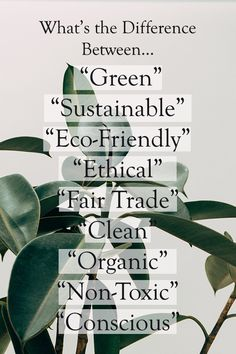 Sustainable, Green, Eco-Friendly, Ethical, Conscious: The careless practice of using these terms lightly and synonymously, especially by marketers, has created a bit of confusion. So to clear things up, here are some basic guidelines for those who are curious about the many shades of green.