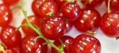 Redcurrants are easy to grow, heavy cropping fruit.