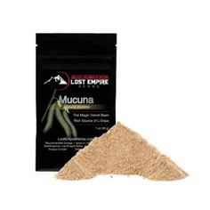Mucuna pruriens – A Powerful Source of Neurotransmitters With Wide Ranging Benefits* Mucuna pruriens is a natural source of L-DOPA, or levodopa, an amino acid that converts into dopamine. Dopamine is an essential part of the brain properly working and can easily be depleted by stress, drug abuse and stimulants.  And that's not all. It contains small amounts of serotonin and 5-HTP making it an interesting herb to act as a nootropic.