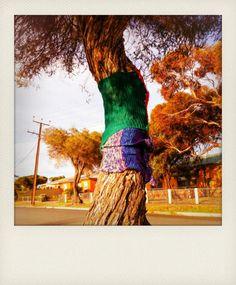 yarn bombing a tree