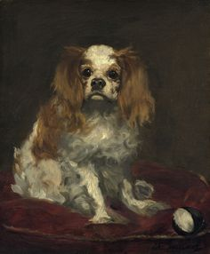 Edouard Manet -     A King Charles Spaniel, 1866.  was a French painter. One of the first 19th-century artists to approach modern and postmodern-life subjects, he was a pivotal figure in the transition from Realism to Impressionism.