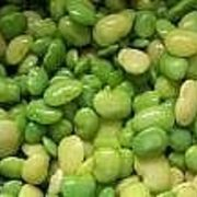 Lima beans are versatile and delicious legume which has many health benefits such as protect against diabetes, defend against chronic illness. Growing Lima Beans, High Protein Vegetables, Organic Cleaning Products, Butter Beans, Kidney Beans, Natural Cures, Natural Foods, Health Benefits, Plants