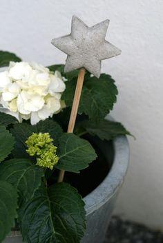 diy Beton stecken stern Dekor Hortensien Blumenkasten