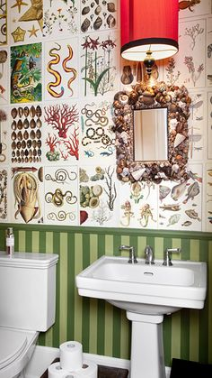 """walls papered in pages from the book """"Cabinet of Natural Curiosities"""" Wallpaper Stencil, Bathroom Wallpaper, Natural Curiosities, Cabinet Of Curiosities, Downstairs Bathroom, Upstairs Bathrooms, Eclectic Decor, Modern Decor, Book Cabinet"""
