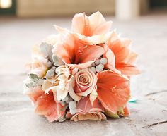 Pair striking coral hibiscus with pretty peach roses and grey berries for a vibrant, unique bouquet. THERE ARE CORAL HIBISCUS? Coral Wedding Themes, Aqua Wedding, Gray Weddings, Wedding Colors, Wedding Pl, Maroon Wedding, Dusty Miller, Boutonnieres, Wedding Bouquets