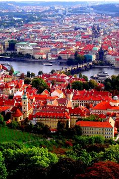 Prague Red Roofs wallpaper 640x960