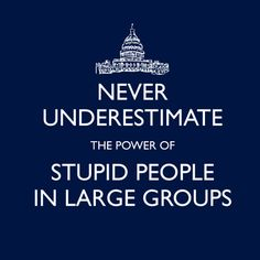 LOL!!! - Never Underestimate The Power of Stupid People in Large Groups