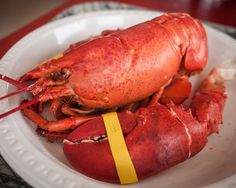 America's 33 Best Seafood Shacks