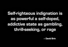 Self-righteous indignation is as powerful a self-doped, addictive state as gambling, thrill-seeking, or rage. -- David Brin