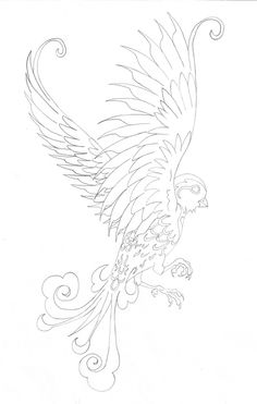 Sparrow Tattoo (almost perfect wings...) except i want a pheonix! this is gorgeous