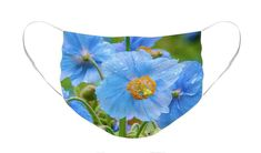 Blue Poppies Face Mask by Louise Tanguay. The face mask is machine washable. All face masks are available for worldwide shipping and include a money-back guarantee. Blue Poppy, Masks For Sale, Basic Colors, Mask Design, Color Show, Face Masks, Colorful Backgrounds, Fine Art America, Poppies