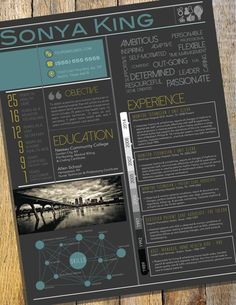 Infographic Resume by CraftPimp on Etsy
