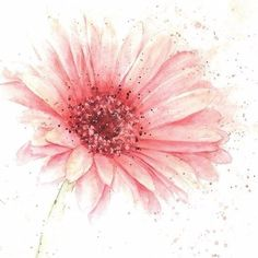 Watercolor Daisy Tattoo, Simple Watercolor Flowers, Watercolor Cards, Abstract Watercolor, Watercolour Painting, Painting & Drawing, Watercolours, Daisy Drawing, Plant Painting