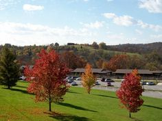 Blue Licks Battlefield State Resort Park  camping 10299 Maysville Rd.  Carlisle, KY 40311