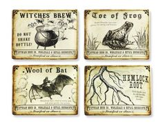 Halloween Potions Rectangular Appetizer Plates, Set of 4 Williams Sonoma
