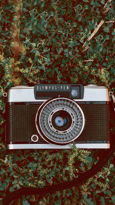 A Olympus Pen é uma irmã menor da famosa Olympus Trip 35 e fotografa em meio-quadro. Clique no link para saber mais e ver fotos feitas com essa câmera!  #background #olympuspen #vintage #papeldeparede