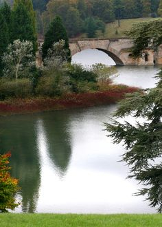 In the grounds of Blenheim Palace by Diane