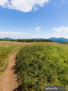 Hike the Appalachian Trail to Max Patch, a rolling, grassy, wildflower-covered bald mountain with gorgeous views Thru Hiking, Go Hiking, Mountain Hiking, Hiking Trails, Asheville Hiking, North Carolina Hiking, Dupont State Forest, Max Patch, Adventure Activities