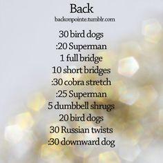 workout program for back