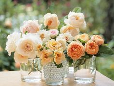 Peach, pink, coral flowers in vases || Photo by Wendy313 on flickr